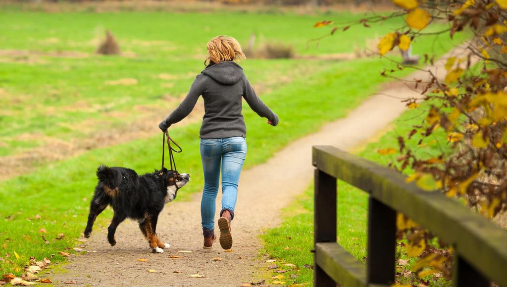 """კანადაში, კომენდანტის საათის დროს, ქალმა ქმარი თასმით """"გაასეირნა"""" - """"ძაღლს ვასეირნებ!"""""""