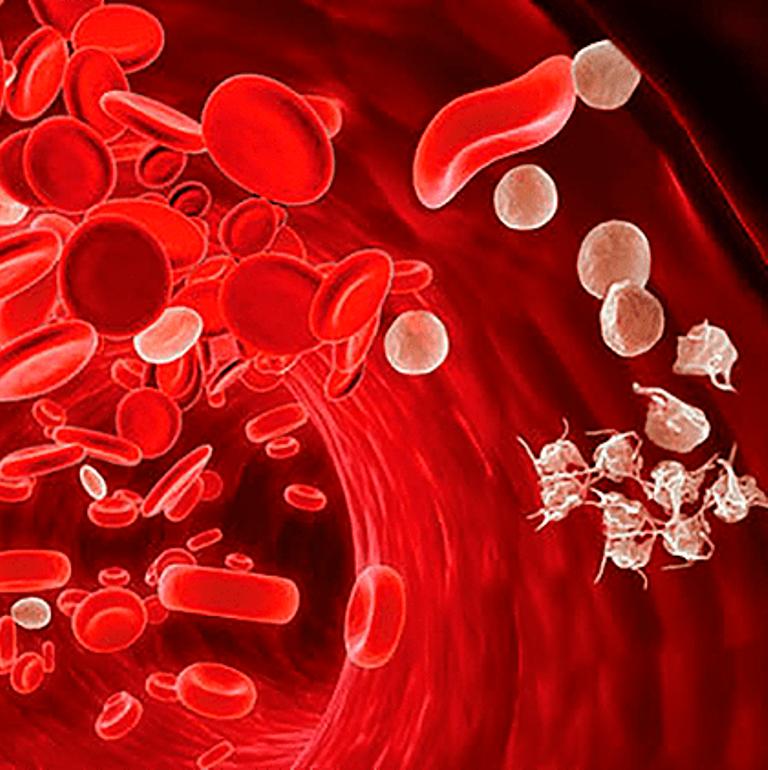 პროდუქტები, რომლებიც სისხლს ათხელებენ და ახდენენ სისხლის შედედების პრევენციას